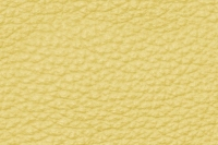 Leather textures tiled 19